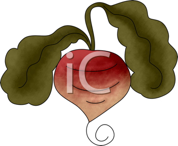 Royalty Free Clipart Image of a Turnip