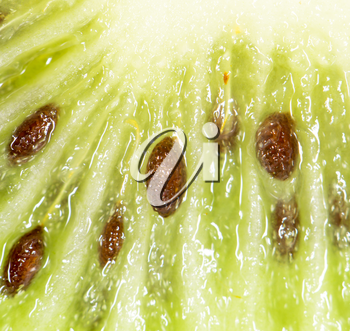 kiwi as a background. super macro